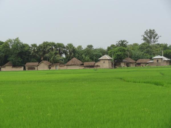 Partha Bose