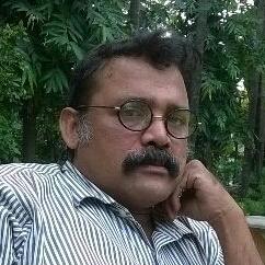 Debasish Bhaduri