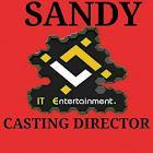 Sandy IT Entertainment