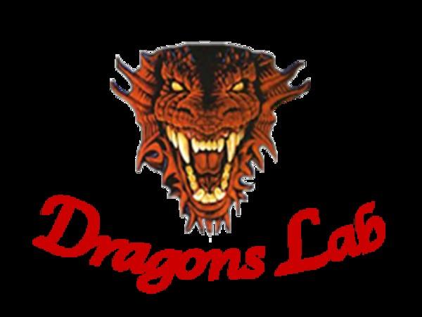 Harsh Narayan Dragons Lab Pvt. Ltd.