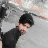 Ajit Singh portfolio image4