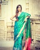 Shailaja Tiwari portfolio image3