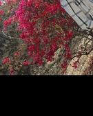 Uzaif Qureshi portfolio image4