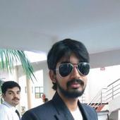 Sanjay Shankar  portfolio image1