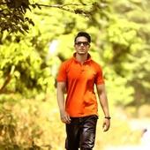 Vivek Pratap  portfolio image2
