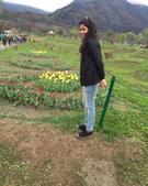 Deepika Bhandari portfolio image4