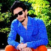 Tejbir Singh portfolio image5