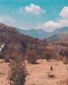 Aaryan Diwan portfolio image6
