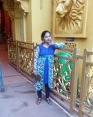 Shital Prasad  portfolio image4