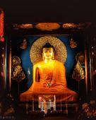 Gulshan Maurya portfolio image3