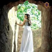 Chattrapal Singh portfolio image3