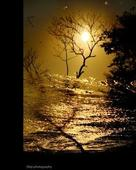 Dilip prasad portfolio image6