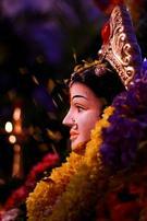 Sujith N S portfolio image4