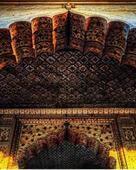 Aaqib ali mondol portfolio image1