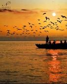 Najeeb Aziz portfolio image2