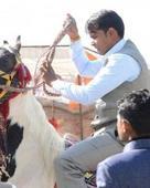 Sunil Kumar Rathaur portfolio image1