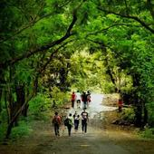 Shyamkumar portfolio image1