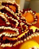 Aham Singha Roy portfolio image6