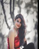Lakshmi Krishnamurthy  portfolio image3