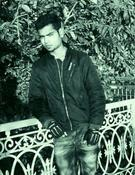 Vikash Singh Parihar portfolio image4