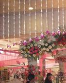 Arvind Photo Singh portfolio image2