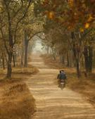 Pradeep Chamaria portfolio image5