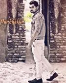 Parbhakar Partap portfolio image5