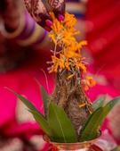 Premal Bhoir portfolio image2