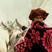 rahul bhati portfolio image3