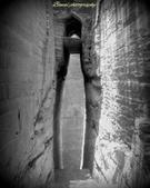 Bawal photography portfolio image5