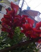 Meena  N Bhatia portfolio image3