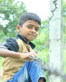 Mahesh Chandrakant Phalake portfolio image1