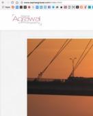 Sapna Agrawal portfolio image1