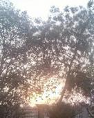 arpit bhatia portfolio image2