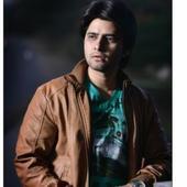 Narain Singh Rajput portfolio image2