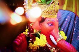 Divya Kharnare  portfolio image6
