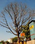 shubham bansal portfolio image2