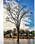 Abhishek Mishra  portfolio image1