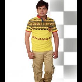 Surendra Pal portfolio image2