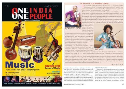 Naviin Gandharv portfolio image39