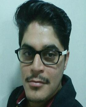 Pushpendra Singh Gaur portfolio image4