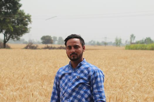 Sharvan Singh portfolio image23