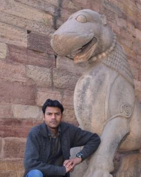 Virendra shriwas portfolio image9
