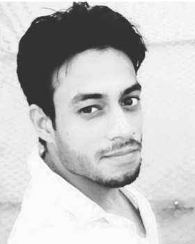 Vikash Kumar portfolio image20