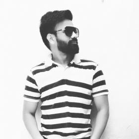 Naveen Kumar portfolio image6
