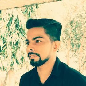 Rahul Mehra portfolio image6