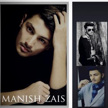 MANISH ZAIS  portfolio image13