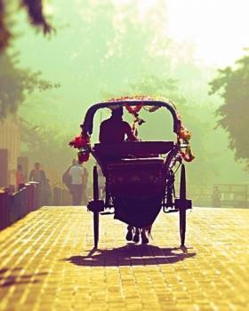 Supriya Rathi portfolio image11