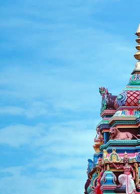 Supriya Rathi portfolio image2