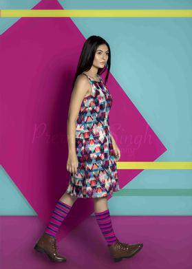 Prerna Singh portfolio image4